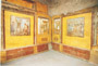 PLINY THE ELDER'S TOUR -POMPEII, HERCULANEUM AND OPLONTIS (ARCHAEOLOGICAL TOURS)