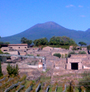 PRIVATE GUIDED TOUR FOR WHEELCHAIR CONFINED VISITORS TO POMPEII-SORRENTO-POSITANO ( TOURS FOR DISABLED)