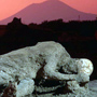 THREE-HOUR PRIVATE  TOUR OF POMPEII WITH AN ENGLISH-SPEAKING GUIDE (POMPEII  TOURS)