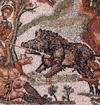 APER ITA CONDITUR (Roast Wild Boar)