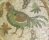 PULLUS VARDANUS (Chicken à la Varus)