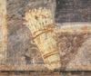ALITER PATINA DE ASPARAGIS (Asparagus Patina)